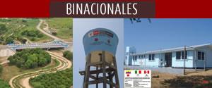 Proyectos Binacionales