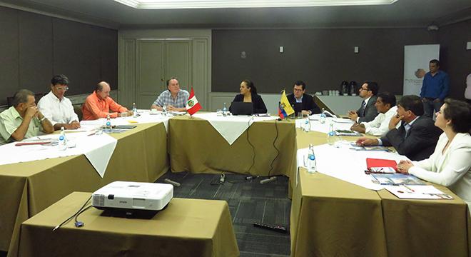 XXIX Reunión del Grupo Binacional de Promoción de la Inversión Privada